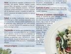virginiaquetglas-reiki-balear-proteina-animal-vegetal-escuela-de-cocina-sana-el-rincon-de-nana-mallorca